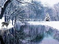 Winter Postcard Swap