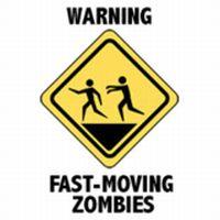 Zombie Apocalypse Survival Diary