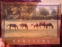 Postcard swap 4