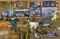 CC: Dog Collage USA