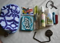What's In Your Purse 2?