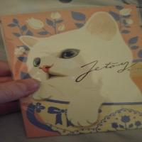Animal Themed Postcard Swap