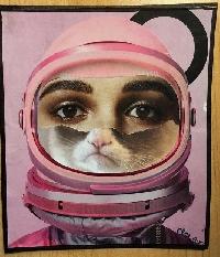 CC: 3 Piece Collage Portrait Postcard