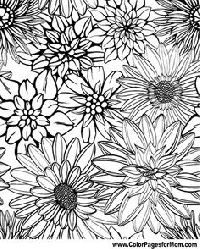 Colouring Page #2 - Flowers