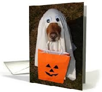 P&M Halloween cards any size
