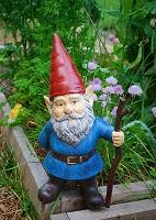 Gnome postcard swap - International