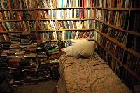 INTERNATIONAL BOOKMARKS - JANUARY