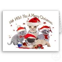 wishing you a merry swap-bot christmas...