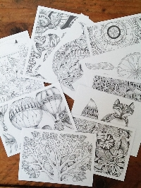3 UNCOLOURED colouring PCs in an Envie #5